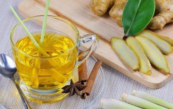 Lemongrass Tea or Oil