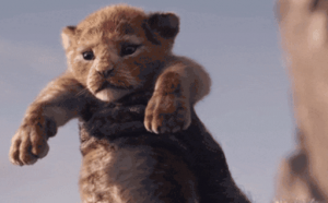 Baby Simba from The Lion King
