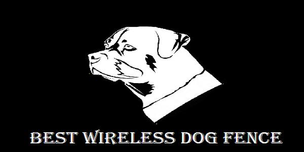Best Wireless Dog Fence Electric Dog Fence